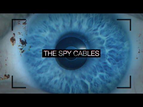 Il Sudafrica è l'El Dorado dello spionaggio internazionale?