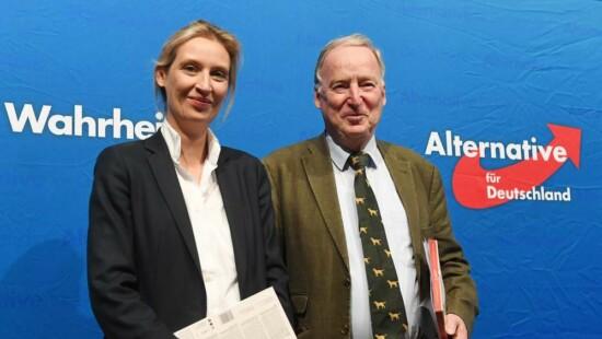 Alice Weidel, germania