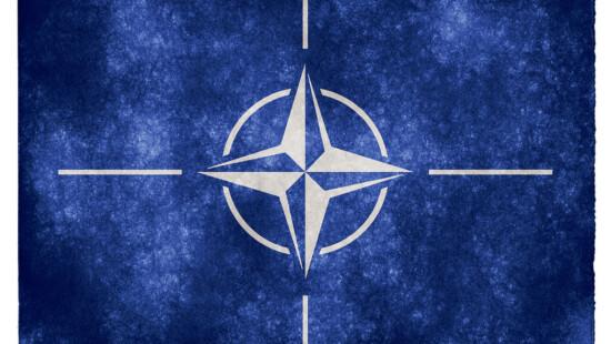 Nato mediterraneo