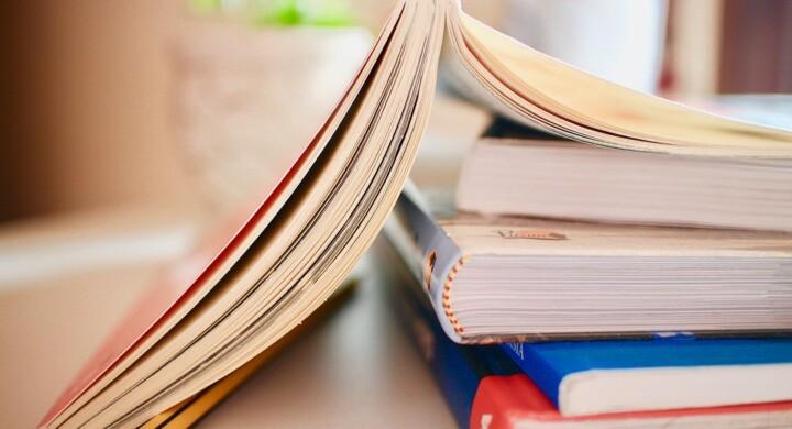 La biografia tra giornalismo e letteratura. Da Svetonio a Woody Allen