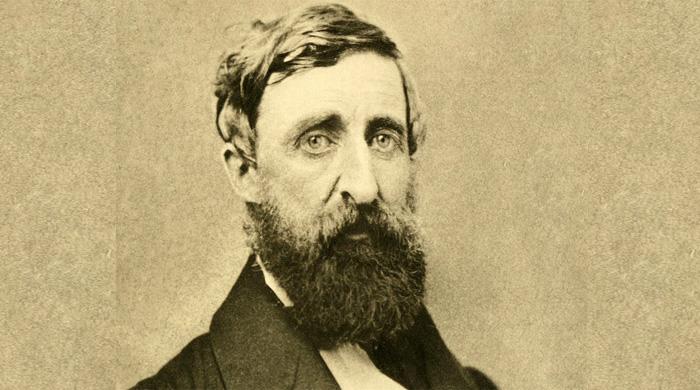 Henry Thoreau, la natura come bene inattaccabile, la disobbedienza per difenderla