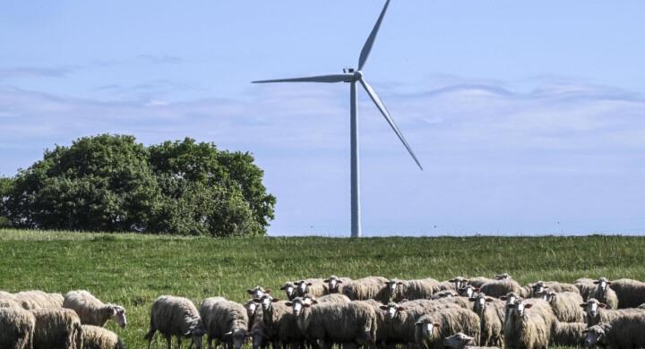 Le rinnovabili sono il futuro ma dobbiamo arrivarci. L'analisi di Bessi