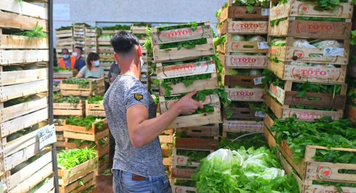 Quanto vale l'agroalimentare italiano? Leggere il report Cdp per credere