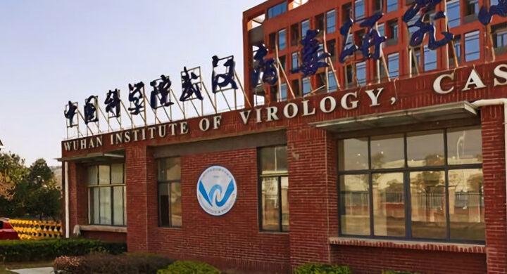 Covid fuggito dal laboratorio di Wuhan? Il Report Usa esce nel giorno dell'Oms